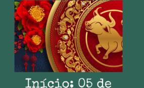 Curso de Mandarim 2021 – Coltec – Instituto Confúcio